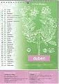 Kalendář 2010 Čmelíny – Víska