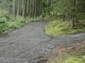 Oprava lesní cesty